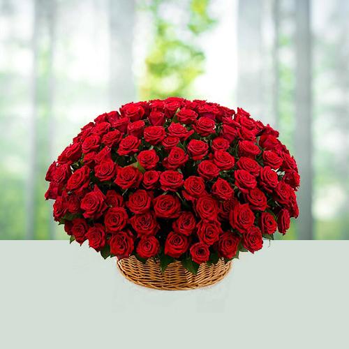 200-Red-Rosesabcdef.jpg