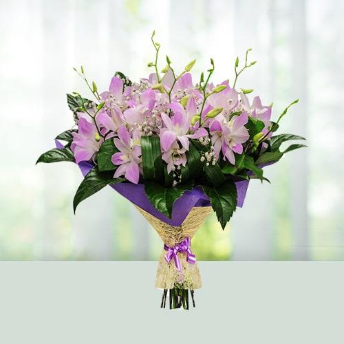 ph-8-p-orchids.jpg