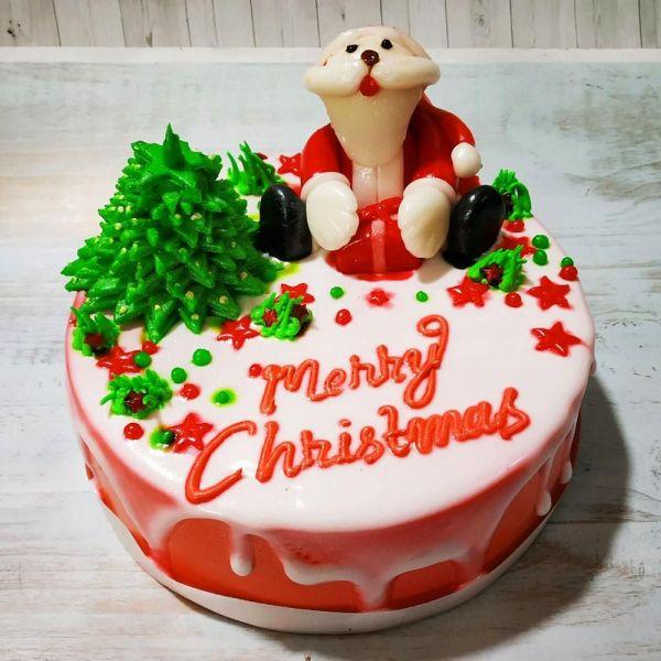 pw-christmas-santa-cake-1kg.jpg