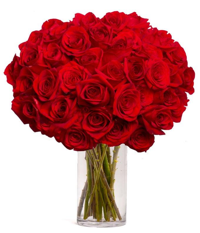 pw-send-flower-usa-50-red-roses.jpg