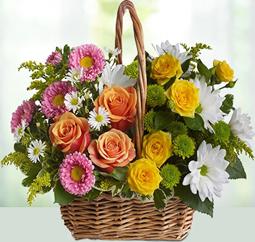 Flower to Philippines