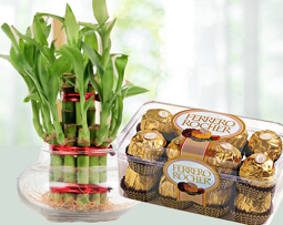 Mothers Day Courier Gifts