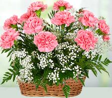 Send Flowers to Ghaziabad