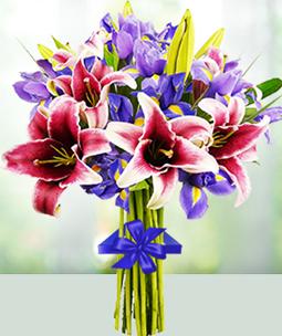 Bouquet for Directors