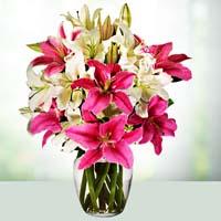 best florist in bhopal