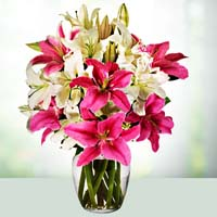 best florist in vadodara