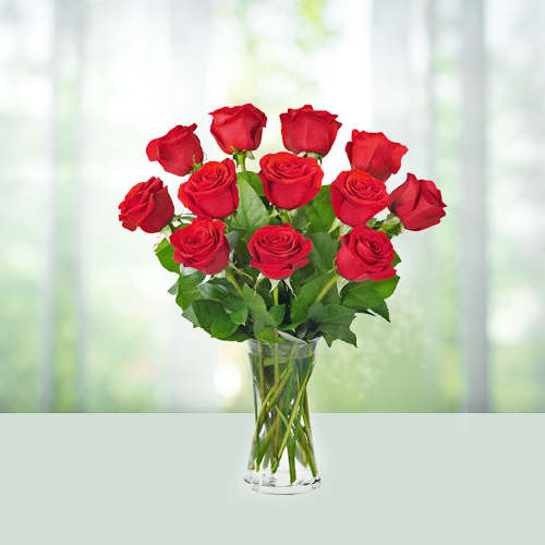 Red rose in a Vase - Flowers