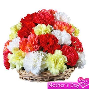 Carnation basket arrangement