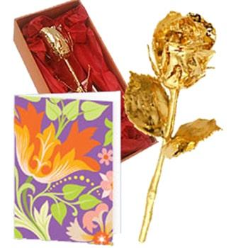 Golden Rose Love Greetings