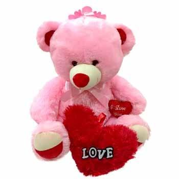 Pink Teddy Bear With a Love Cushion