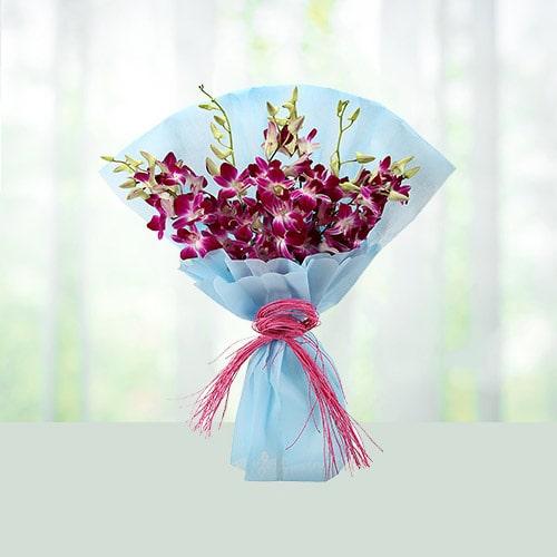 Orchids Extravaganza