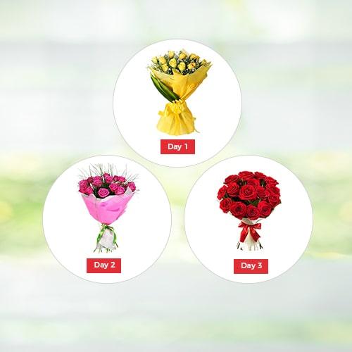 Valentine Roses 3 Days Regular - Valentine Day Gifts to India