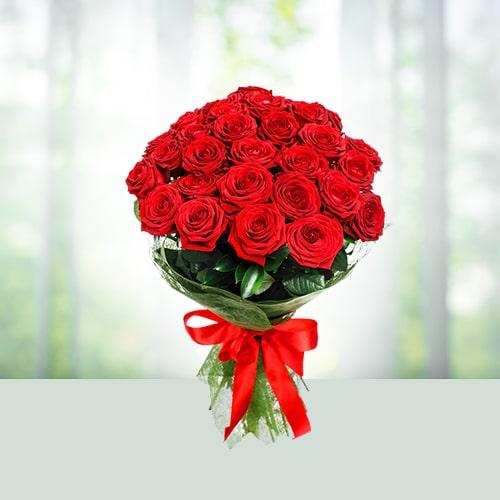 Bloom Roses
