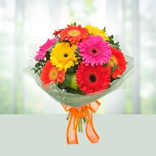 12 Mixed Gerbera Flower Bouquet