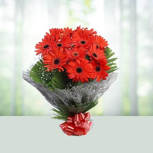 12 Red Gerbera Flower Bouquet