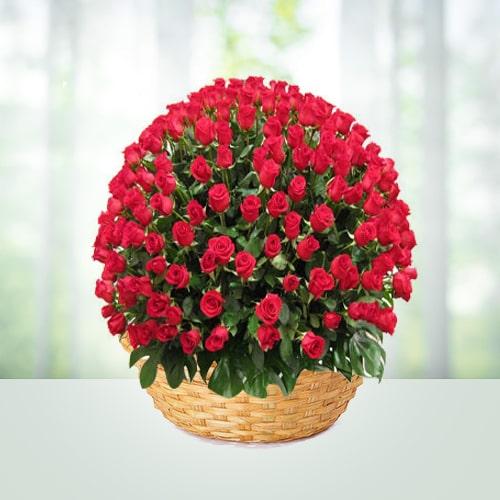 500 Red Roses Flower Basket