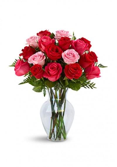 Flowers to UAE- Art Of Roses