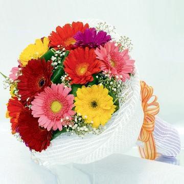 Happiness -12 Gerberas Bouquet