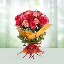 10 Mix Carnations