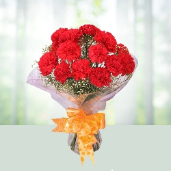 12 Red Carnations Bouquet