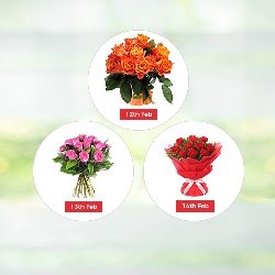 V Day - 3 Days Flowers Hamper