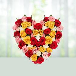 Muticolor Heart Shape Roses