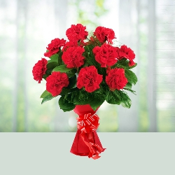 Flowers Bouquet of 12 Red Carnations