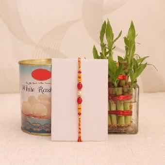 Rakhi Good Luck Plant and Sweet Hamper