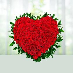 Surprise Love