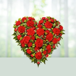 Red Heart Carnations