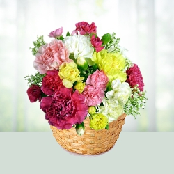 Colorful Carnations Basket