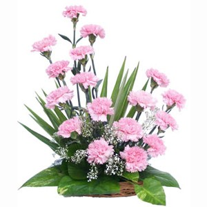 10-pink-carnations-flower-basket.jpg