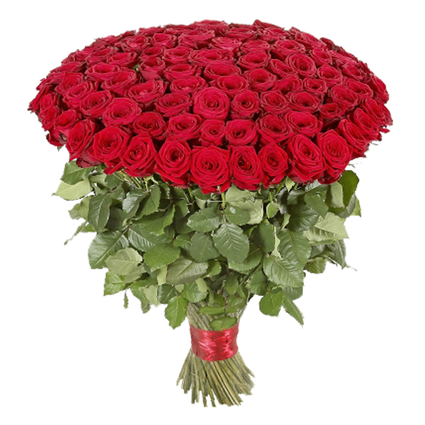 Send 100 Red Roses Flowers Bouquet Flowers Online | 100 Red Roses ...
