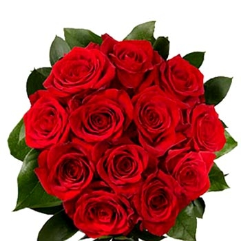 12-red-roses-bouquet.jpg