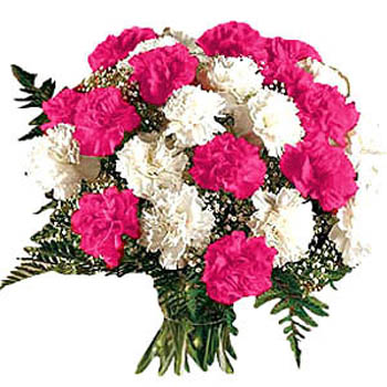 Flowers Bouquet of 12 carnation