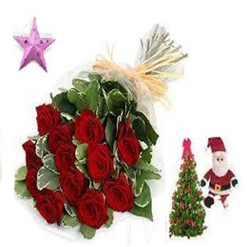 12 red roses bouquet with free santa,christmas tree,star