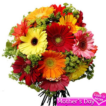 15 mix gerbera Flowers Bouquet