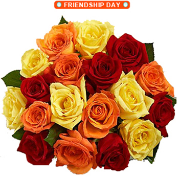 Friendship Colorful Roses