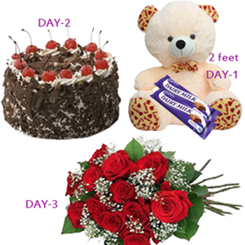 1377851678-PW-3DAYS-SER-COMBO-Send-gifts-to-India.jpg