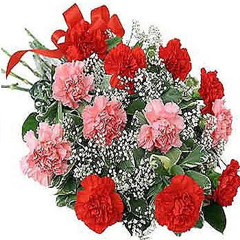 Flowers-Bouquet-of-Red-and-Pink-Carnations--Flowers-to-Bangalore-delivery.jpg