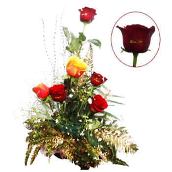 Valentine Special Roses - Delivery Only In New Delhi