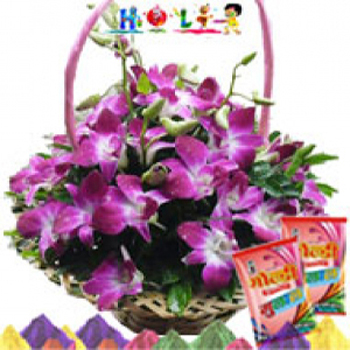 Basket of Orchids with Holi Colors