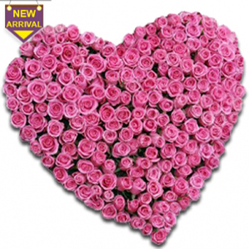 Pink Roses Lover Heart