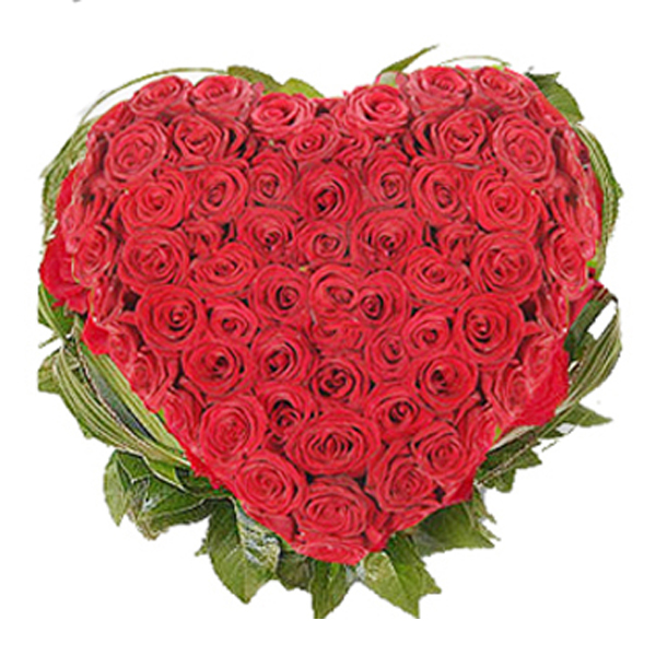 Radiant Red Heart shape flowers