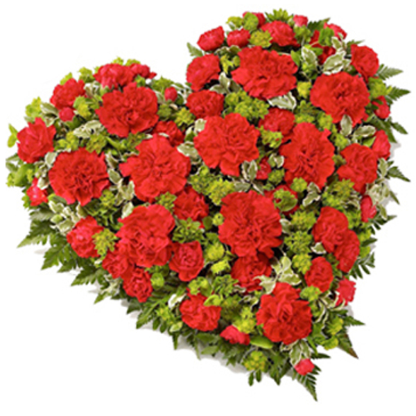 Red-Heart-Carnations.jpg