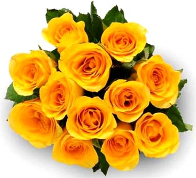 Send yellow flowers online yellow flowers online delivery phoolwala flower bouquet 12 yellow rosesg mightylinksfo