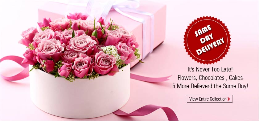 Shower Your Love By Sending Gifts N Flowers Online To Loved Ones