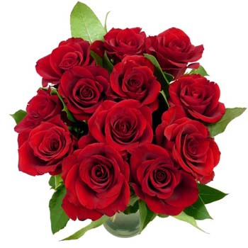 online-flower-delivery-12-red-roses.jpg