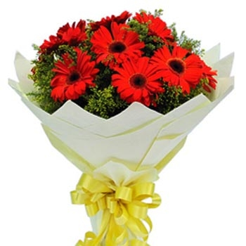 8 red gerbera bouqet