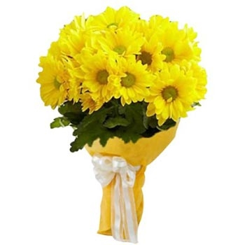 pw-10yellow-gerbera-n.jpg